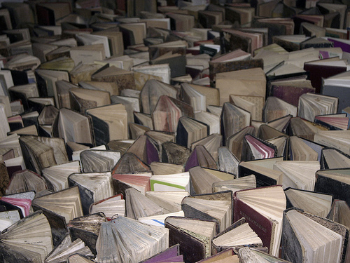 libros-FlickrBacteriano