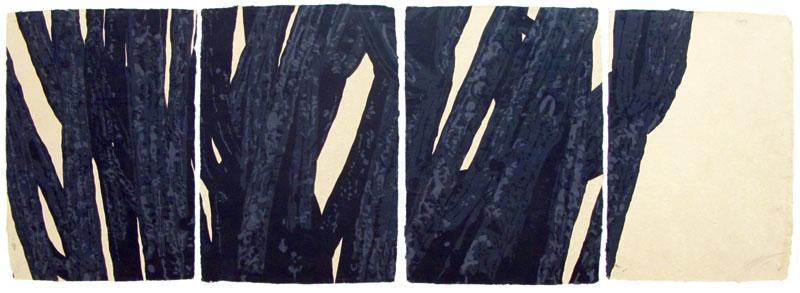 Yagul, serigrafía sobre papel montada en bastidor, 80 x 211, 1991.