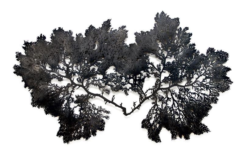 Algae 7, bronce recortado patinado en negro, 120 x 117,  2011.
