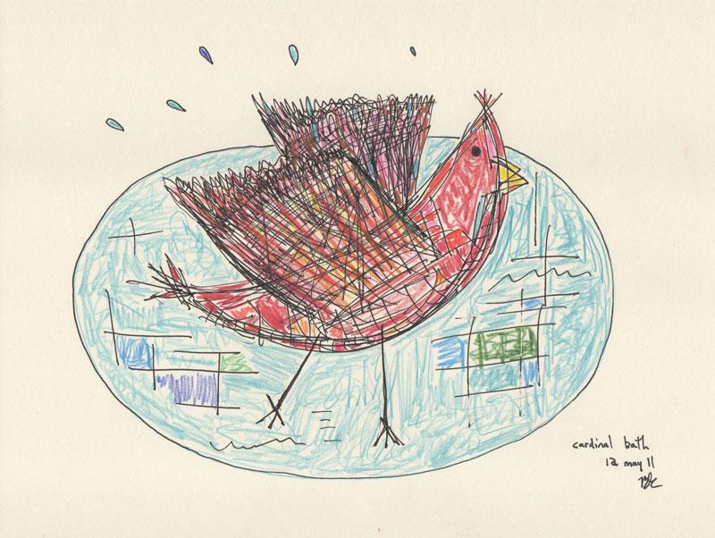 Cardinal bath, lápiz y tinta sobre papel crema, 21.6 x 28 in, 2011.